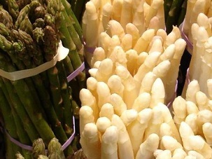 asparagus-green-and-white-303x228